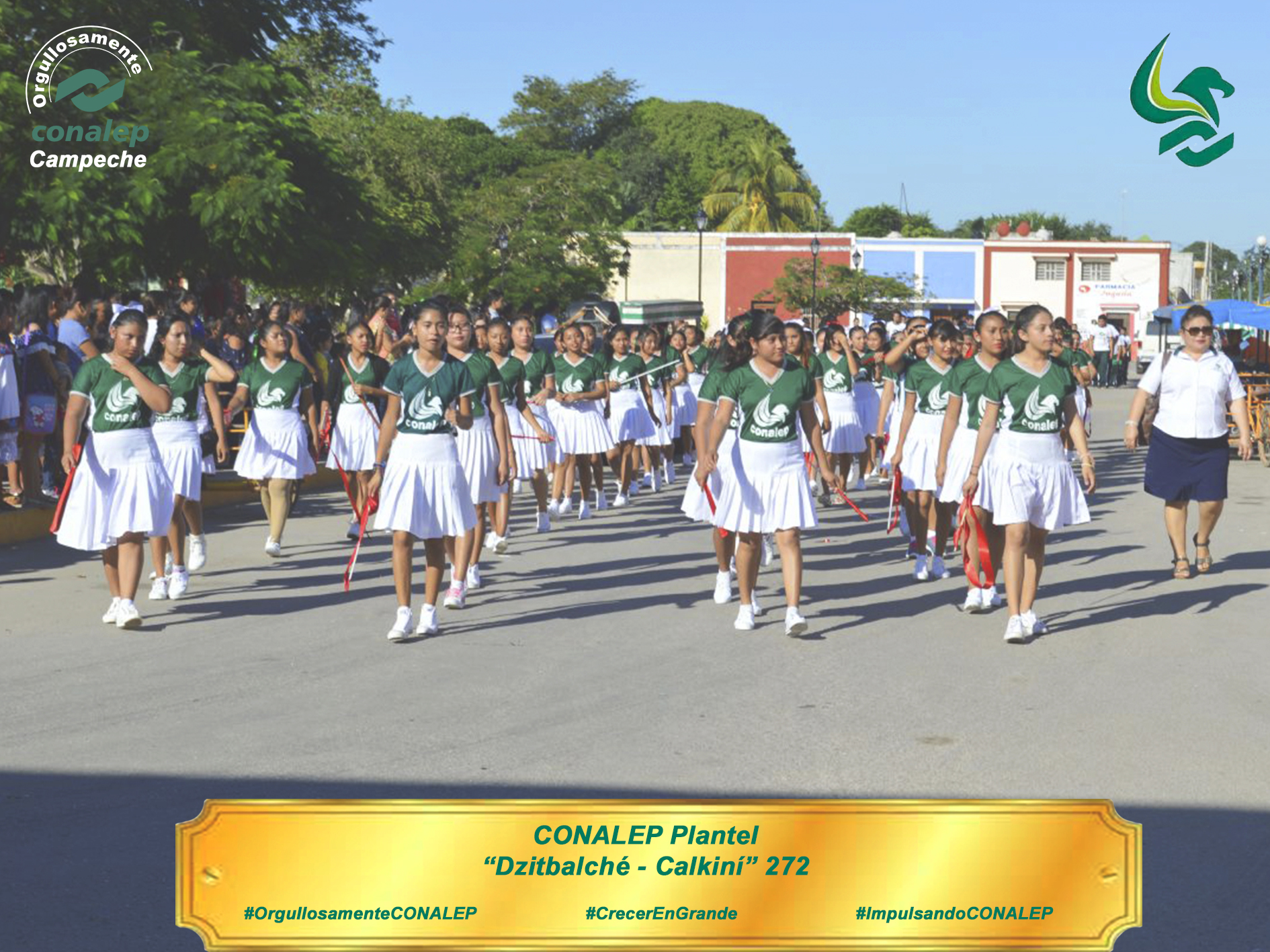 Plantel dzitbalch calkin participa en desfile for Alberca 20 de noviembre campeche